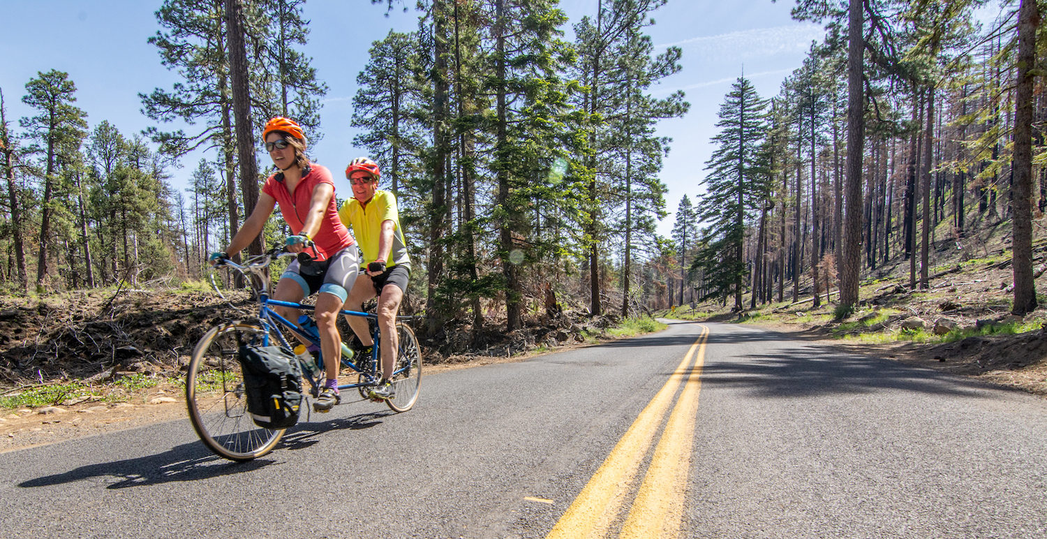 duo on tandem bike cycling along paved road through ponderosa forest