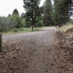 two trails merge and are gravel and pinecone