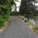 loose gravel path along canal trail