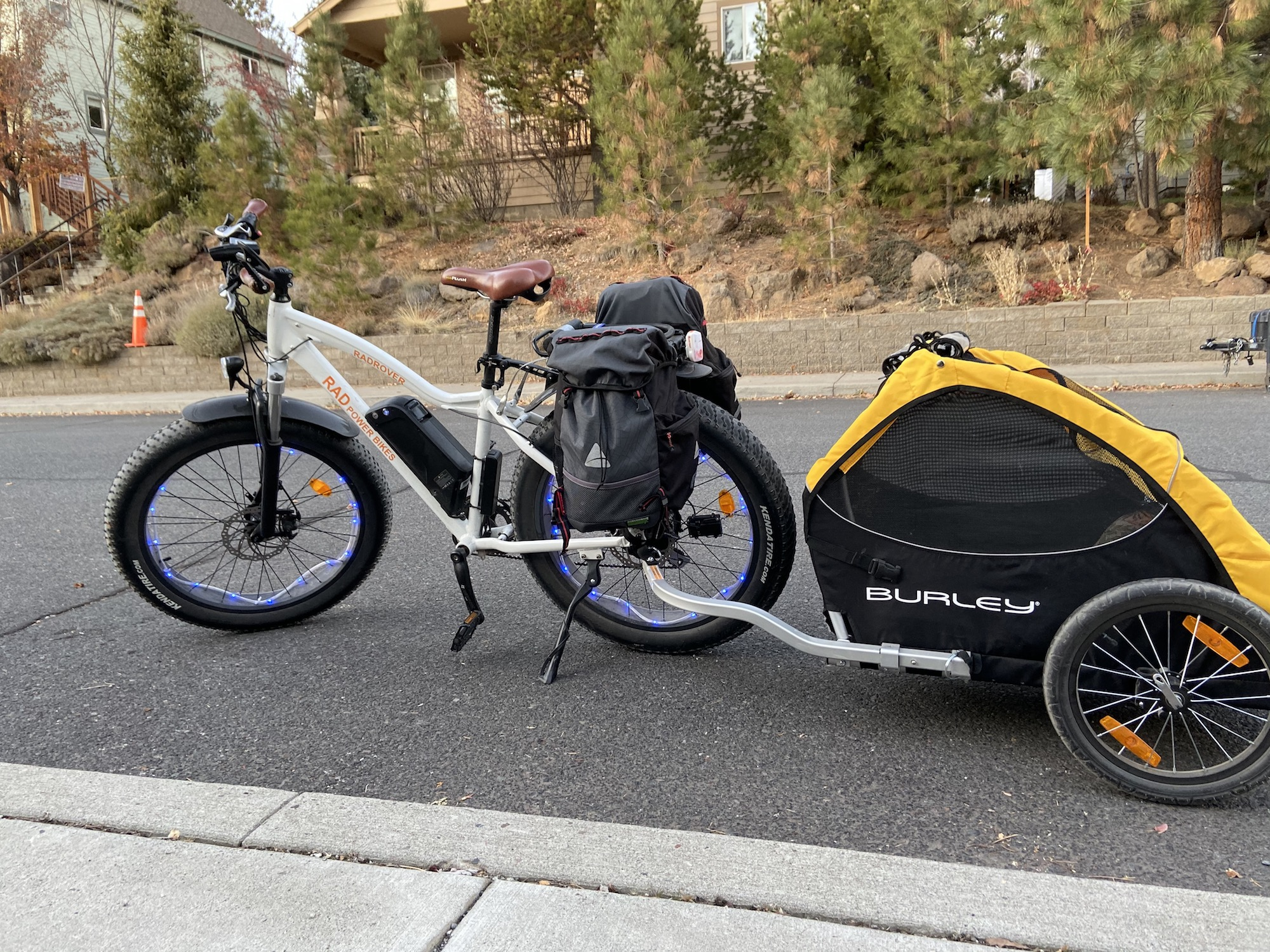 electric fatbike with dog burley trailer