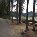 paved trail with wood bench on side