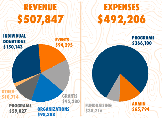 revenue and expense data pie charts
